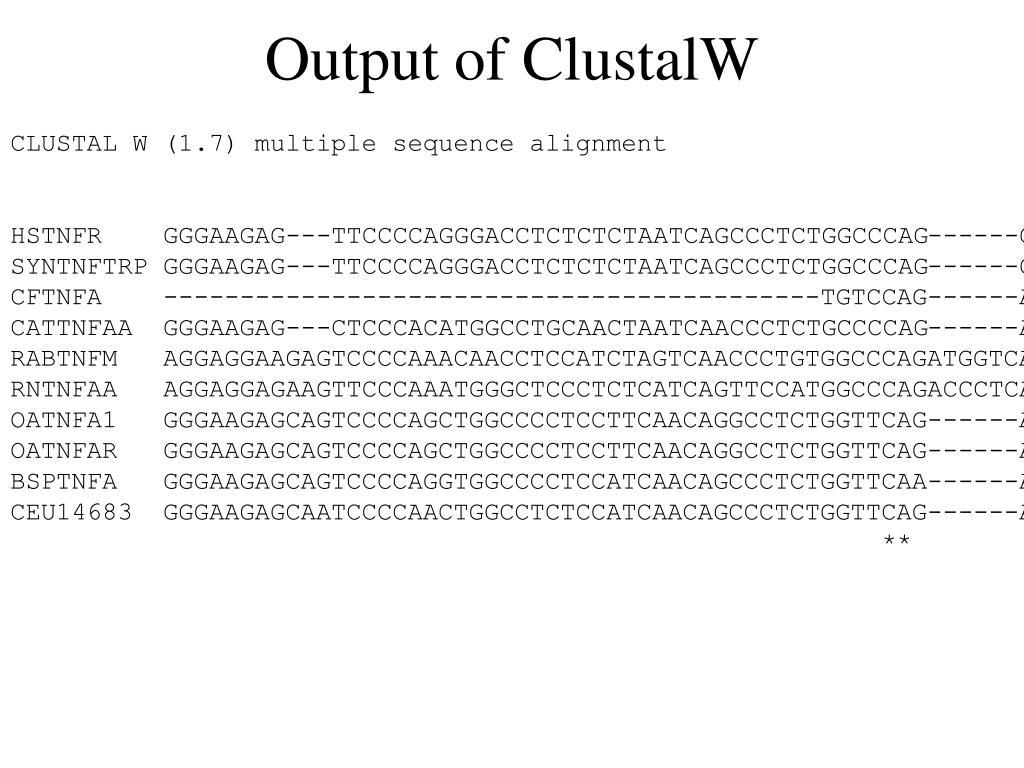 Output of ClustalW