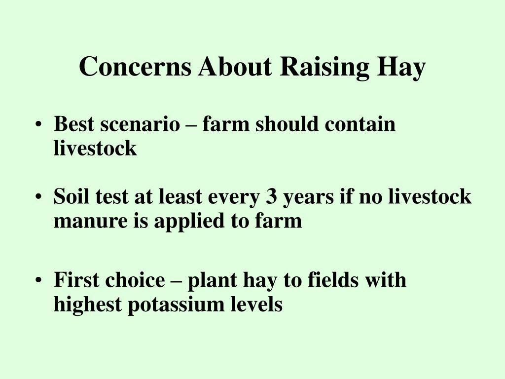 Concerns About Raising Hay