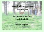 weed management strategies