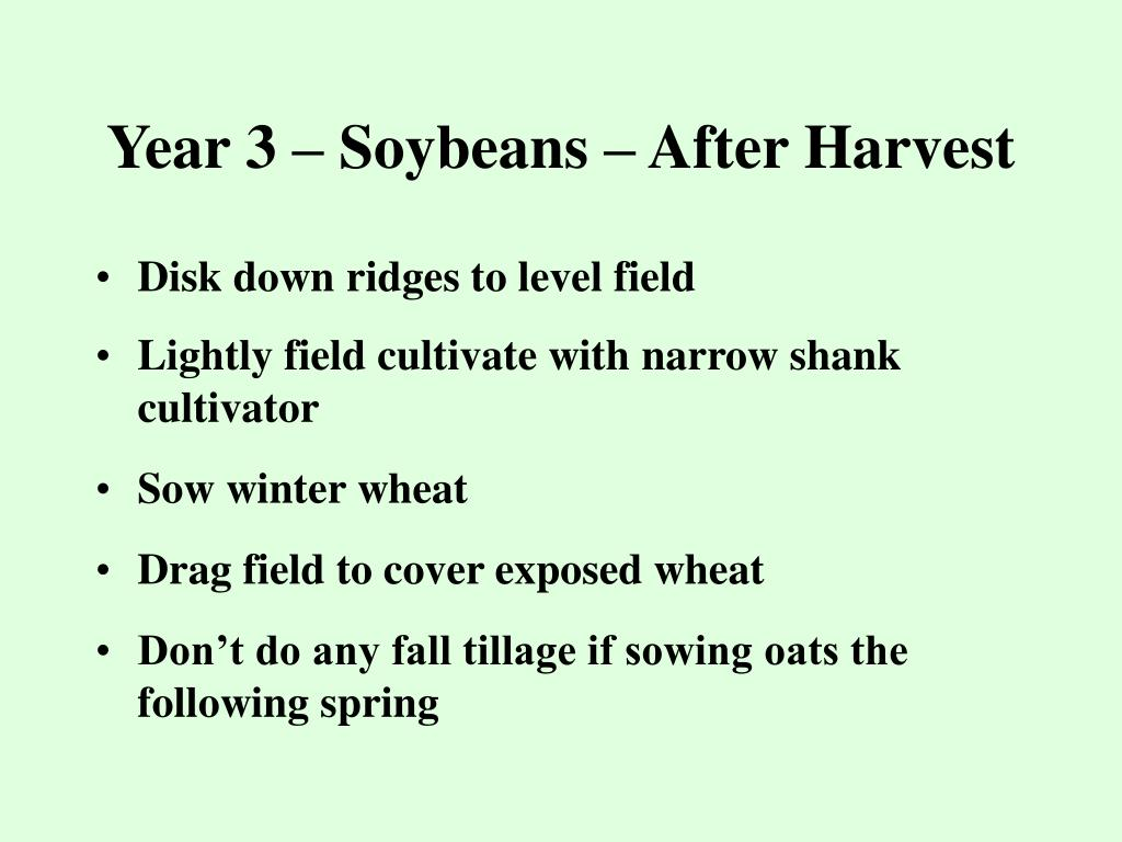 Year 3 – Soybeans – After Harvest