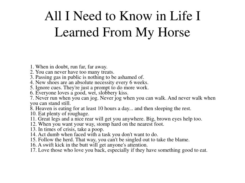 All I Need to Know in Life I Learned From My Horse