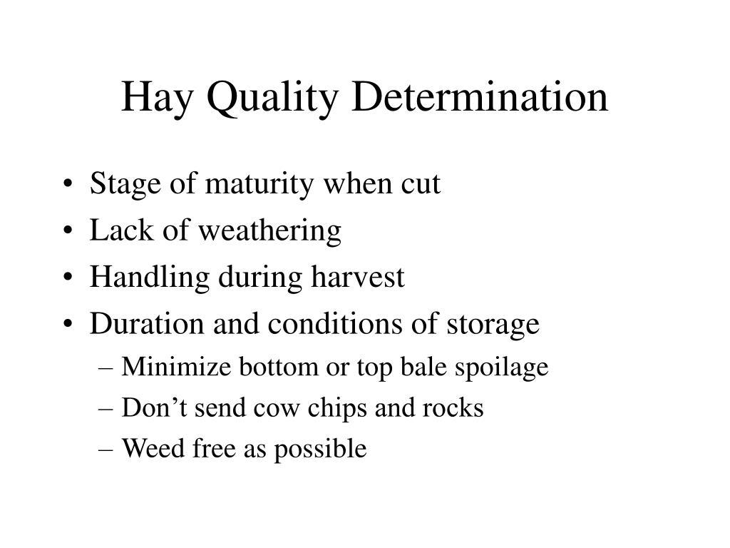 Hay Quality Determination