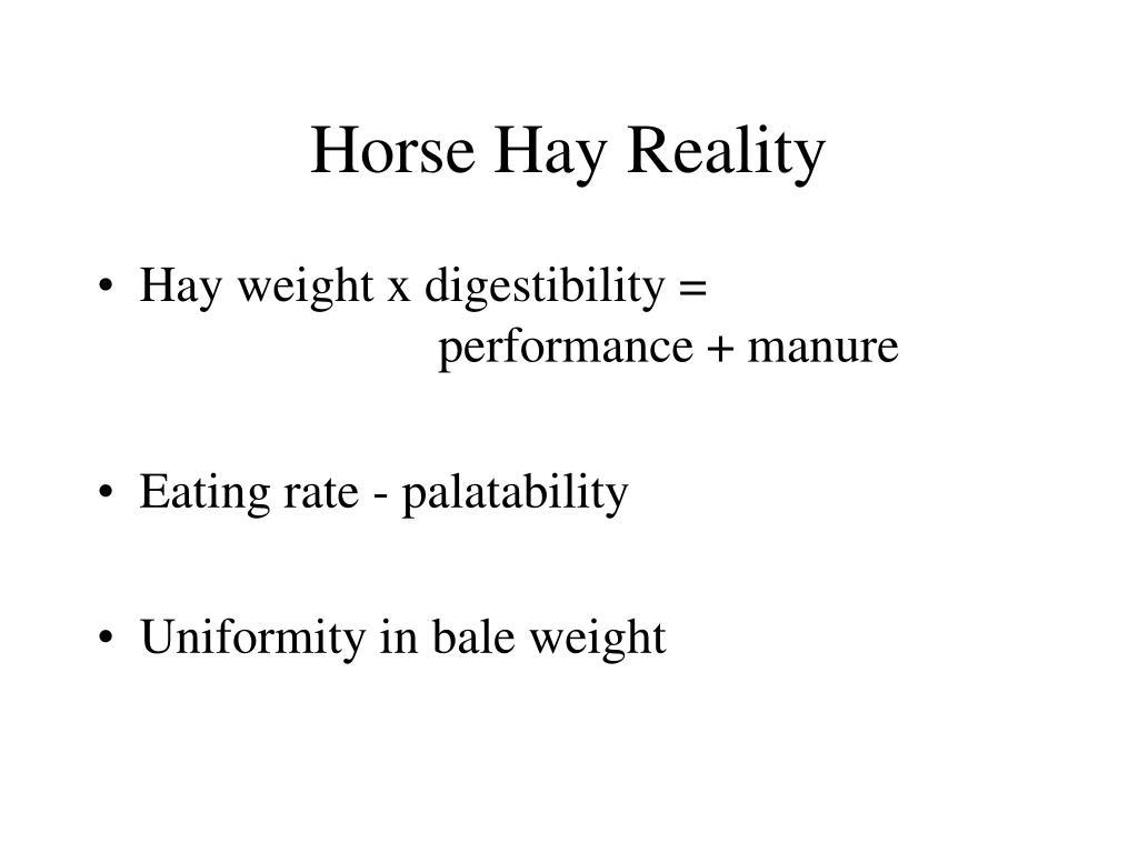 Horse Hay Reality