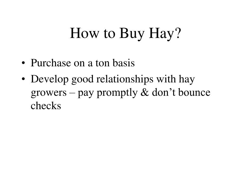 How to Buy Hay?