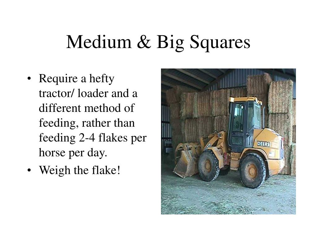 Medium & Big Squares