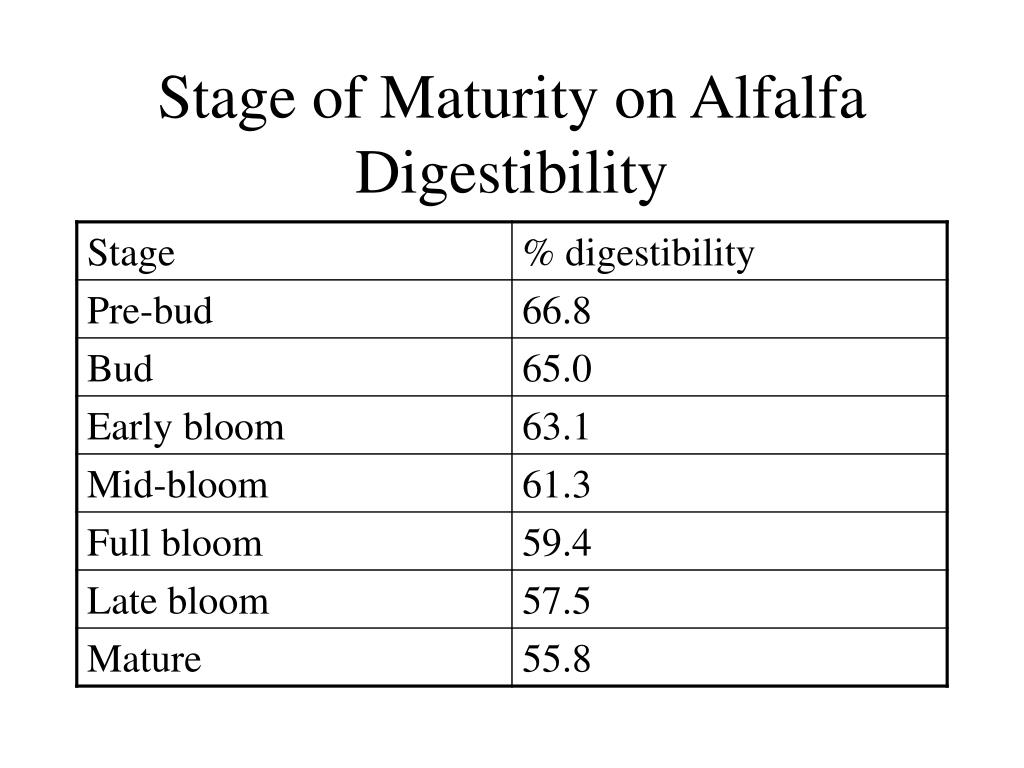 Stage of Maturity on Alfalfa Digestibility