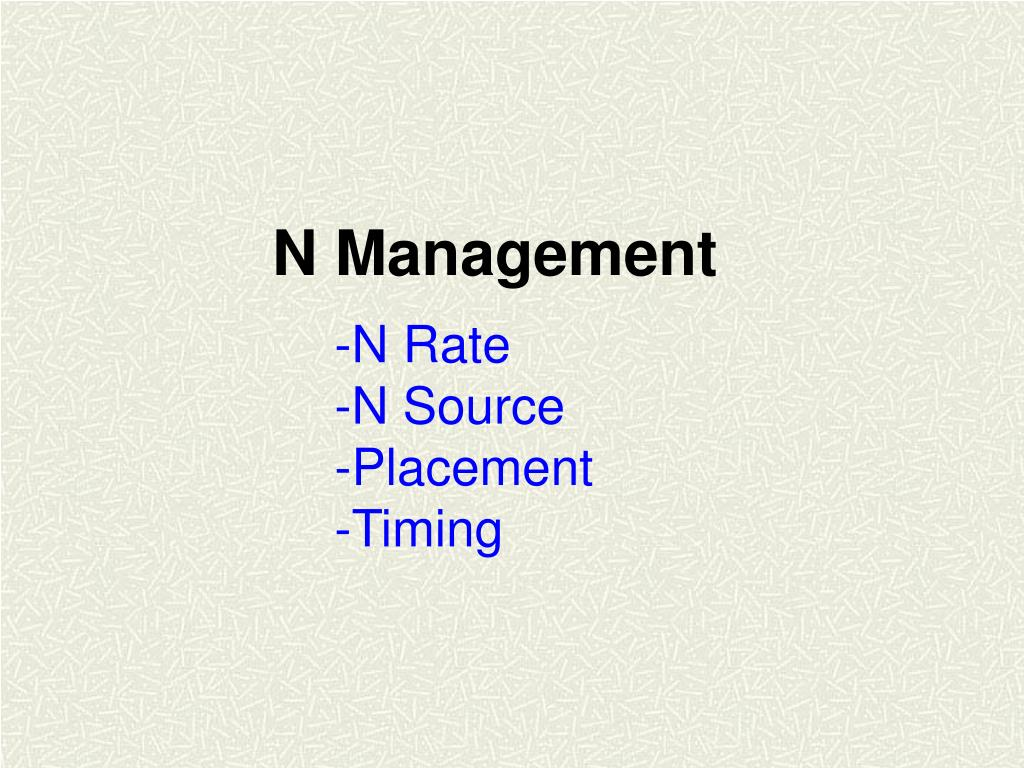 N Management
