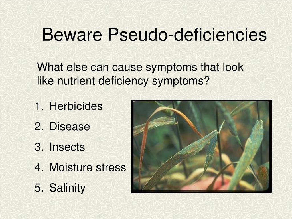 Beware Pseudo-deficiencies