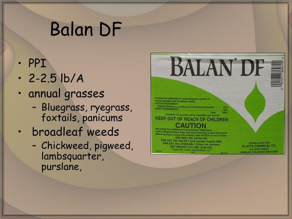 Balan DF