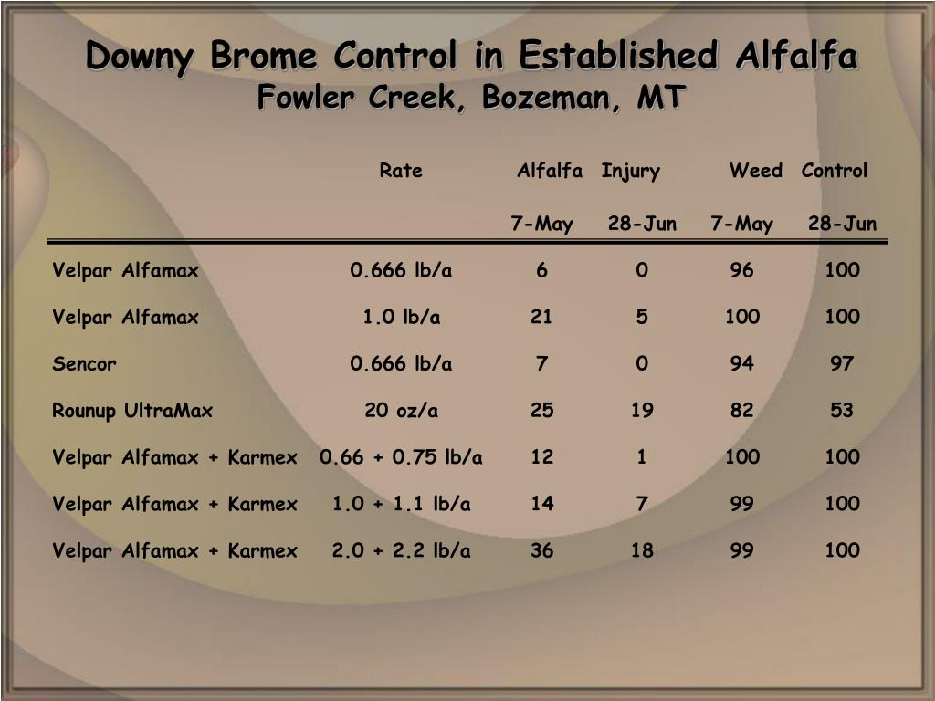 Downy Brome Control in Established Alfalfa