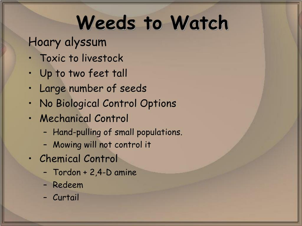 Weeds to Watch