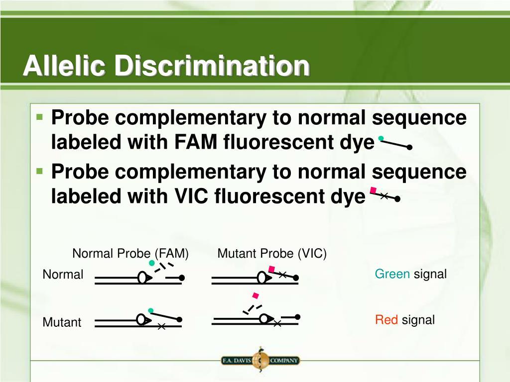 Normal Probe (FAM)        Mutant Probe (VIC)