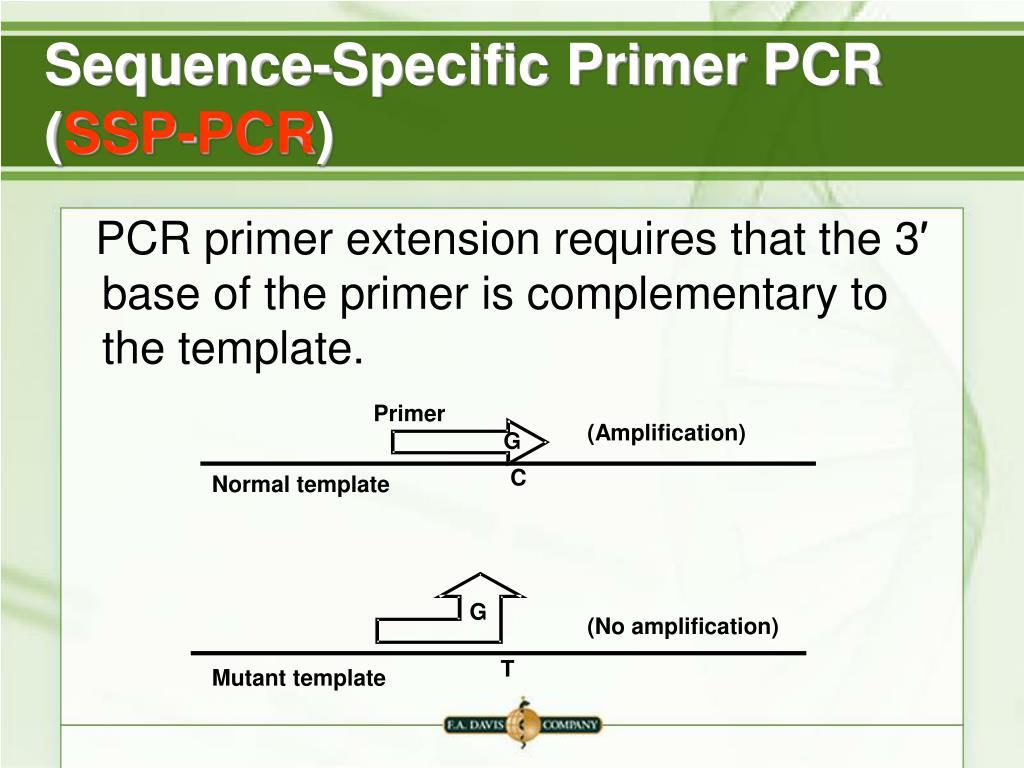 Sequence-Specific Primer PCR