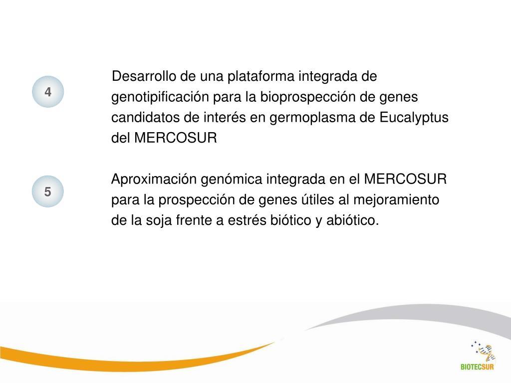 Desarrollo de una plataforma integrada de genotipificación para la bioprospección de genes candidatos de interés en germoplasma de Eucalyptus del MERCOSUR