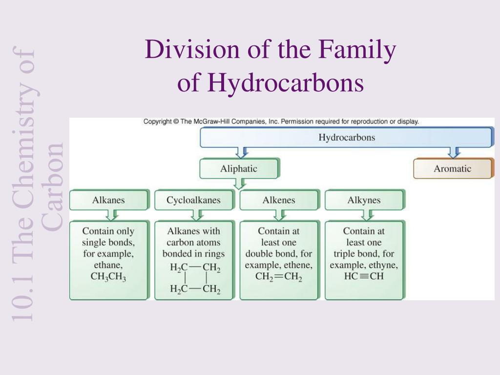 Division of the Family