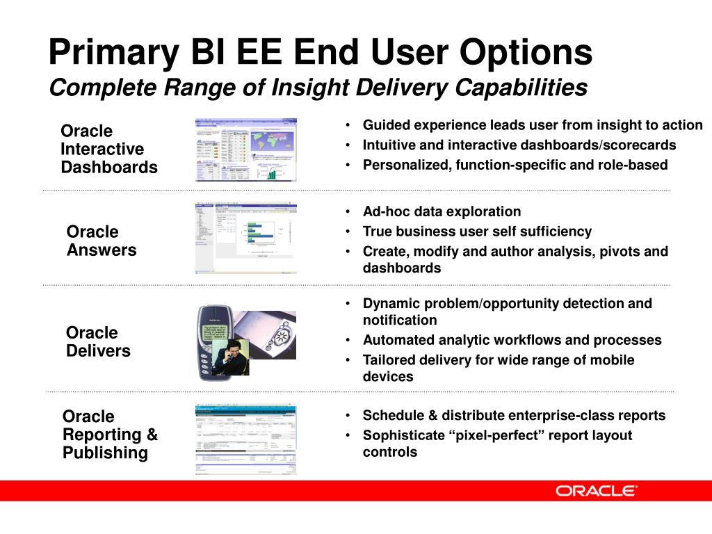 Primary BI EE End User Options