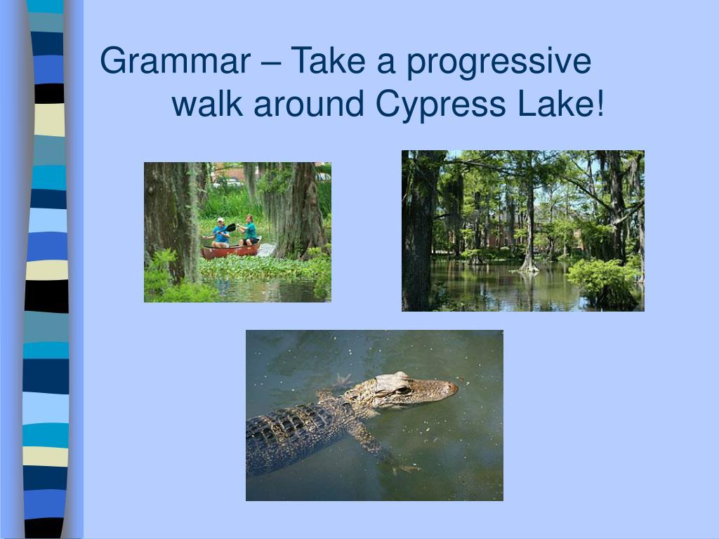 Grammar – Take a progressive                        walk around Cypress Lake!