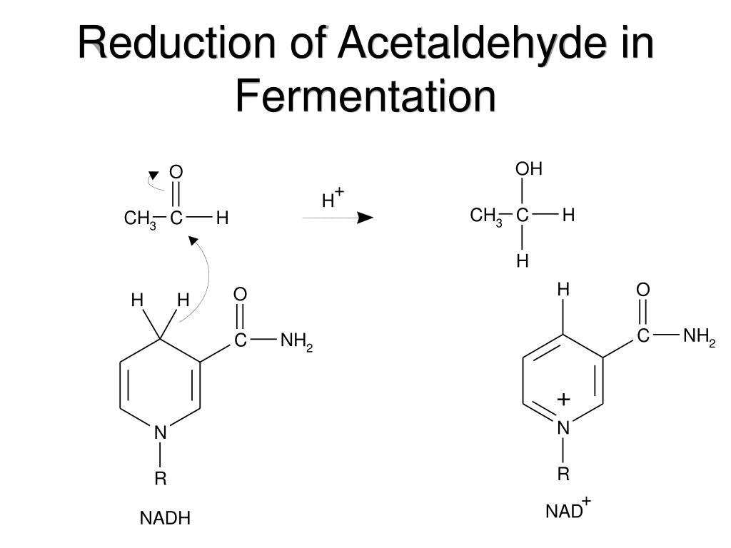 Reduction of Acetaldehyde in Fermentation