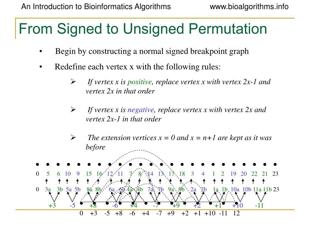 From Signed to Unsigned Permutation