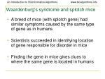 waardenburg s syndrome and splotch mice