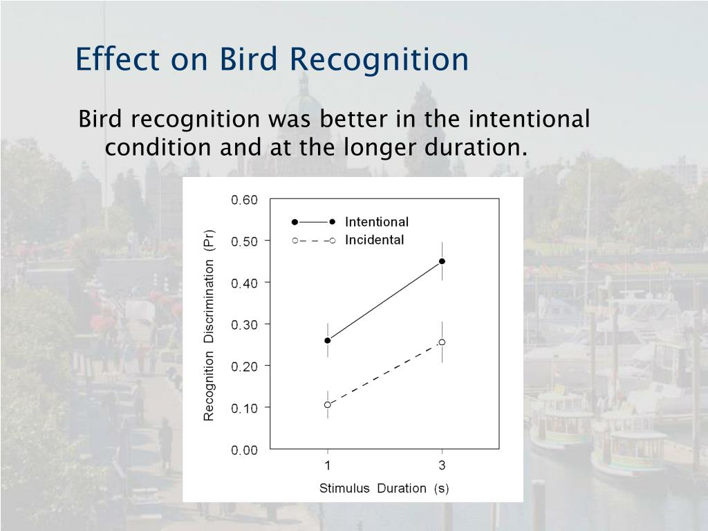 Effect on Bird Recognition