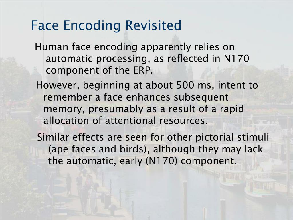 Face Encoding Revisited