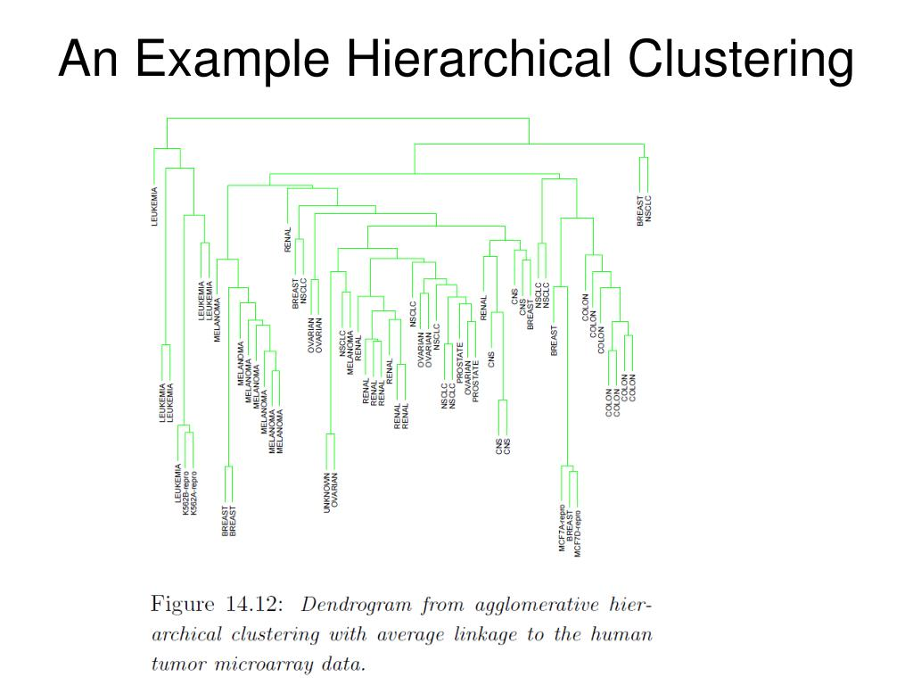 An Example Hierarchical Clustering