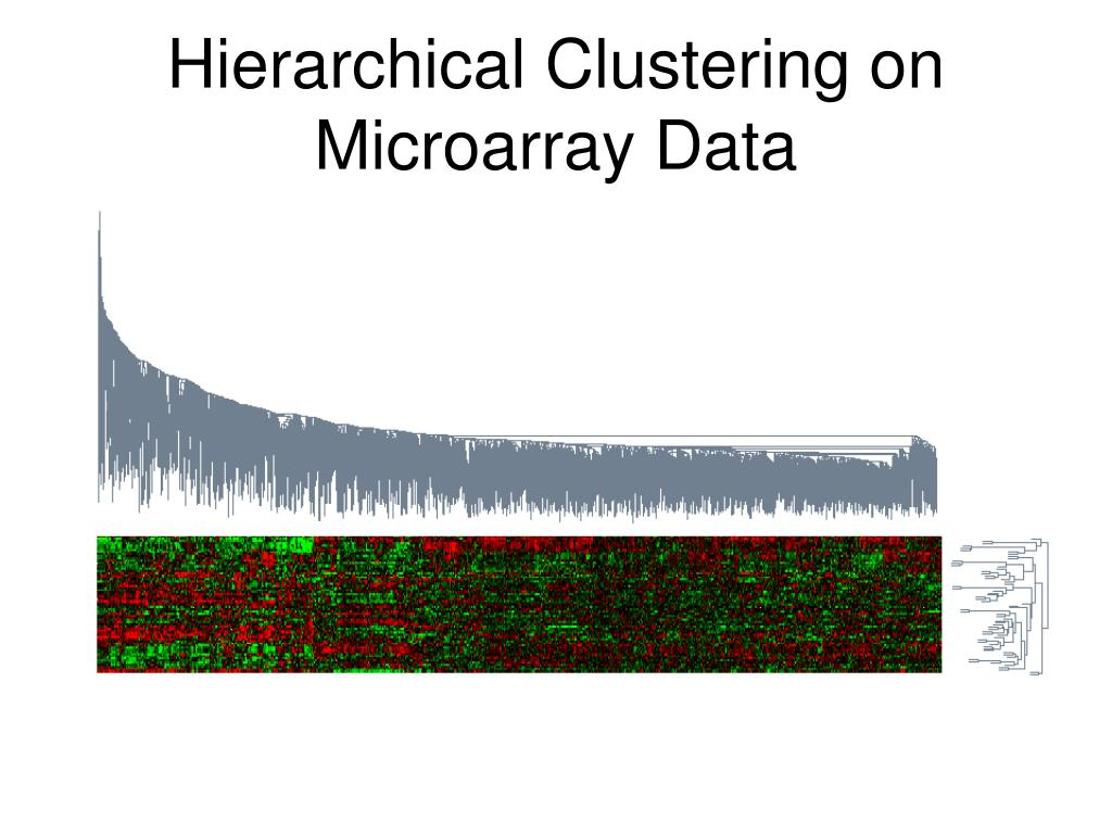 Hierarchical Clustering on Microarray Data