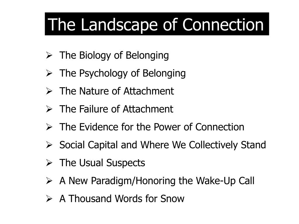 The Landscape of Connection