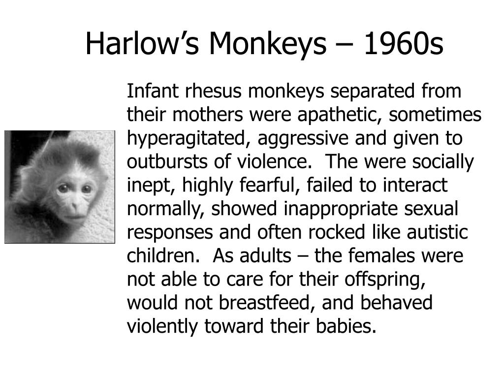 Harlow's Monkeys – 1960s
