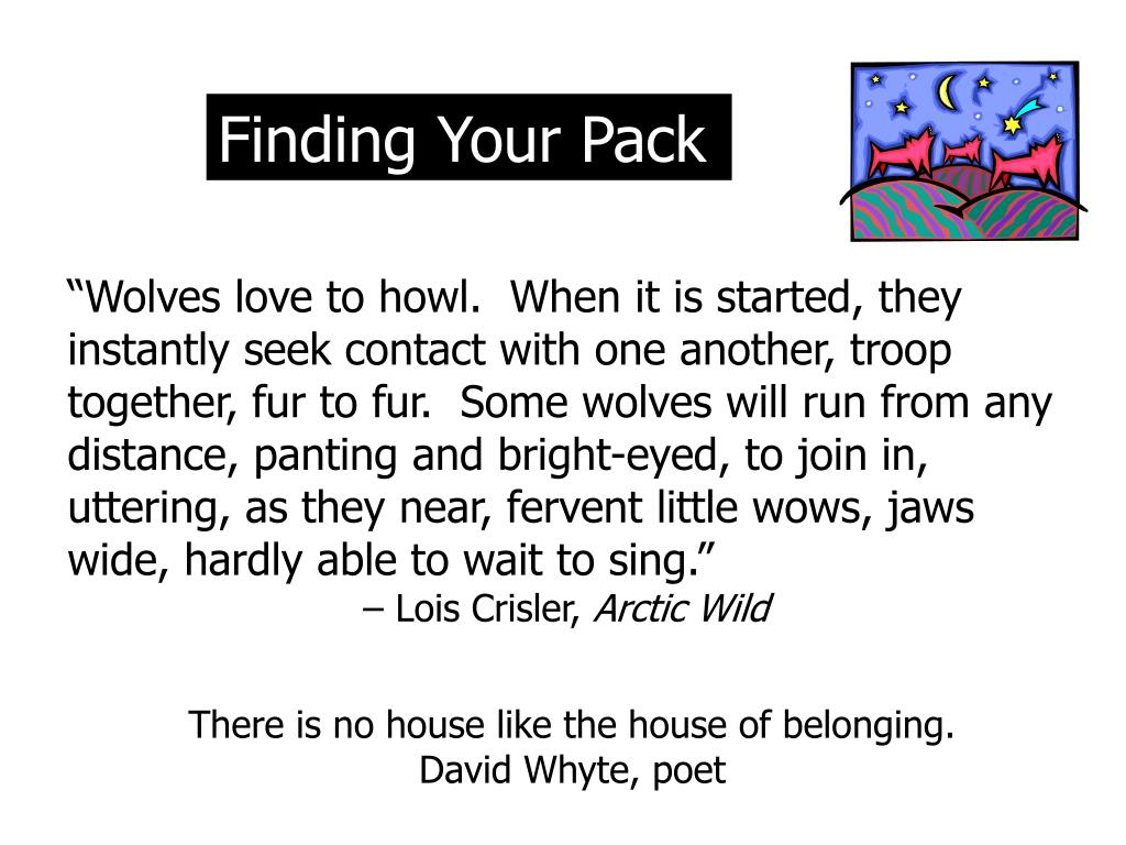Finding Your Pack