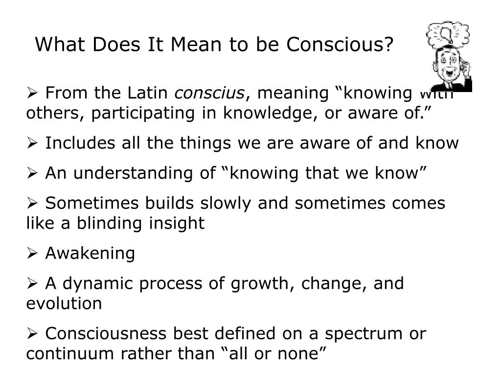 What Does It Mean to be Conscious?