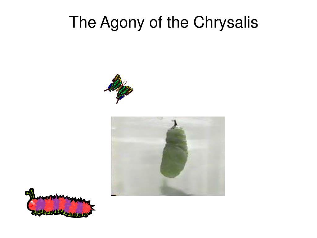 The Agony of the Chrysalis