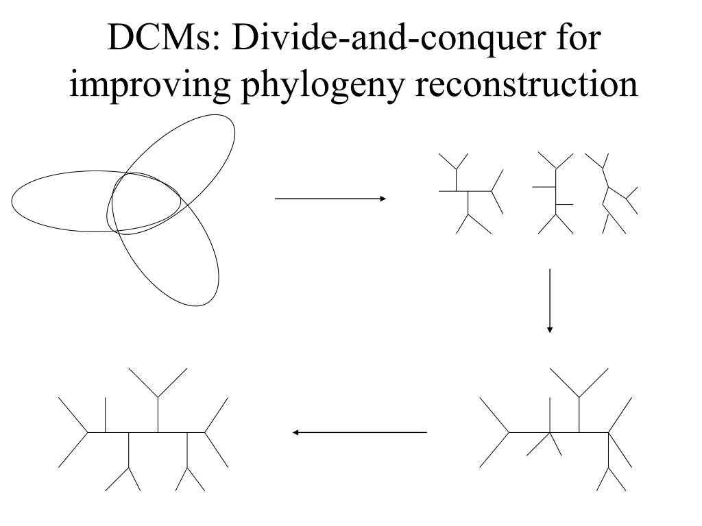 DCMs: Divide-and-conquer for improving phylogeny reconstruction