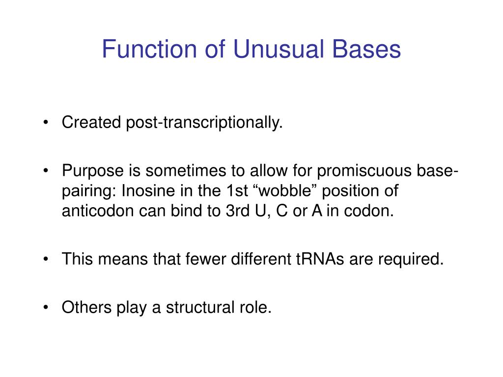 Function of Unusual Bases