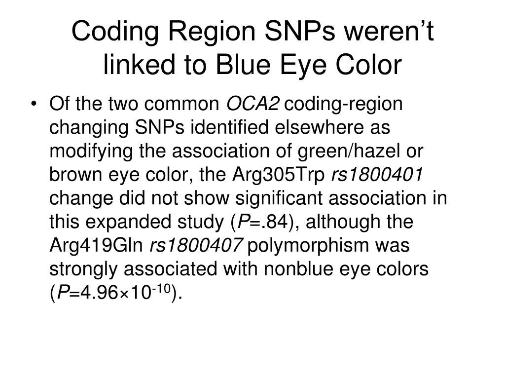 Coding Region SNPs weren't linked to Blue Eye Color
