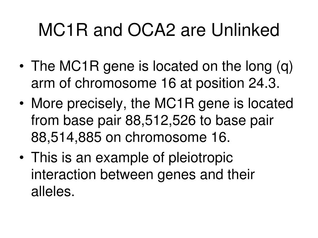 MC1R and OCA2 are Unlinked