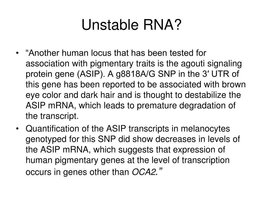 Unstable RNA?