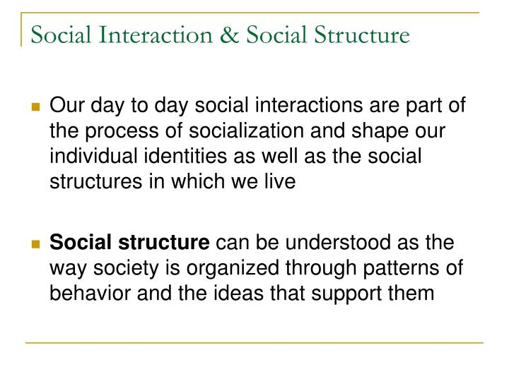 Social interaction social structure