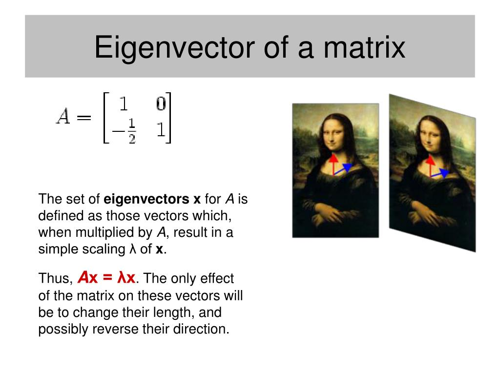 Eigenvector of a matrix