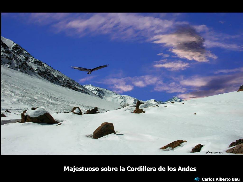 Majestuoso sobre la Cordillera de los Andes