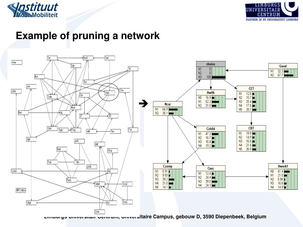 Example of pruning a network