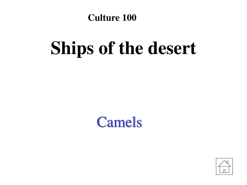 Culture 100
