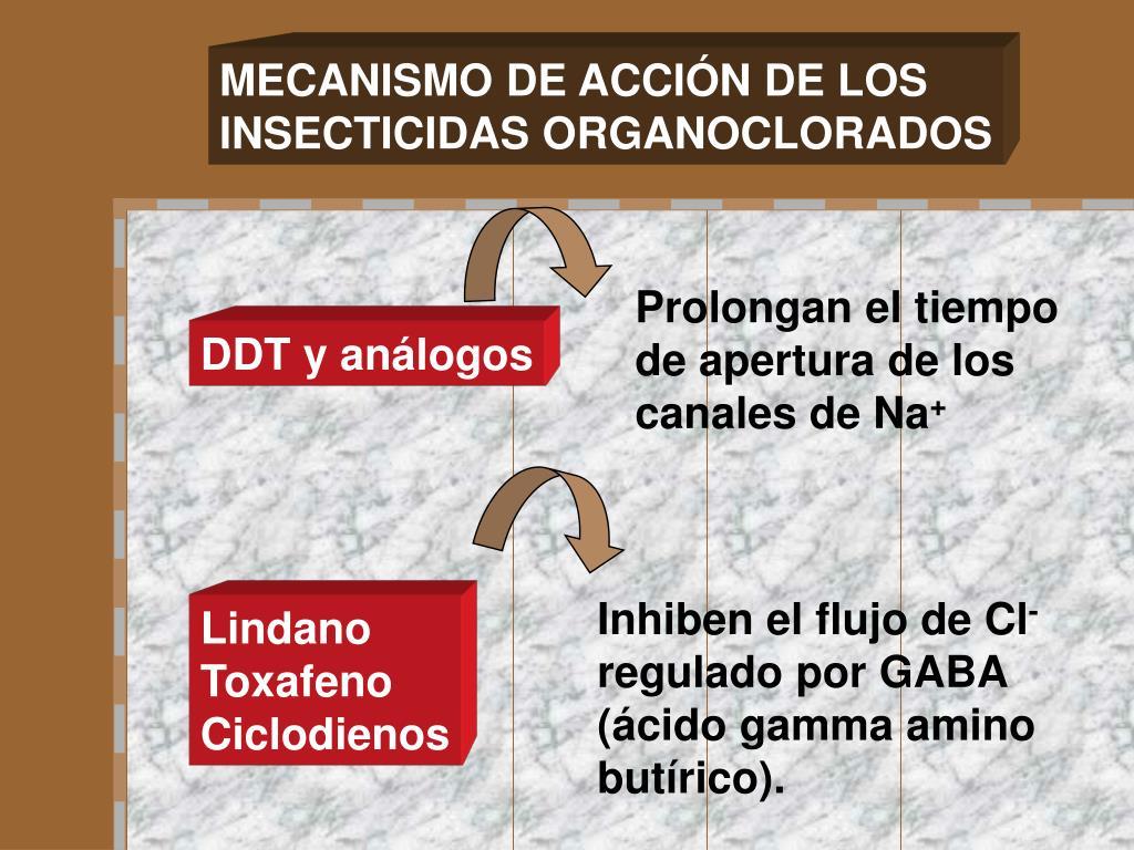 MECANISMO DE ACCIÓN DE LOS