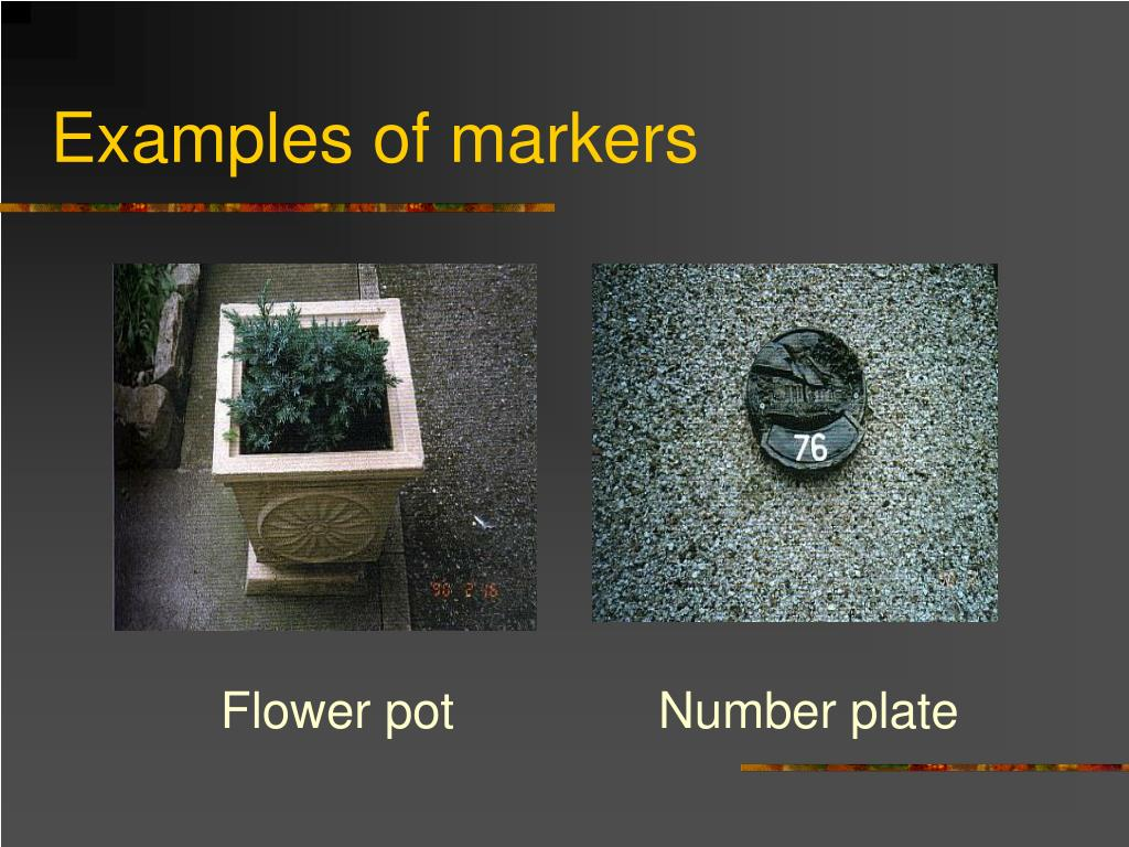 Examples of markers