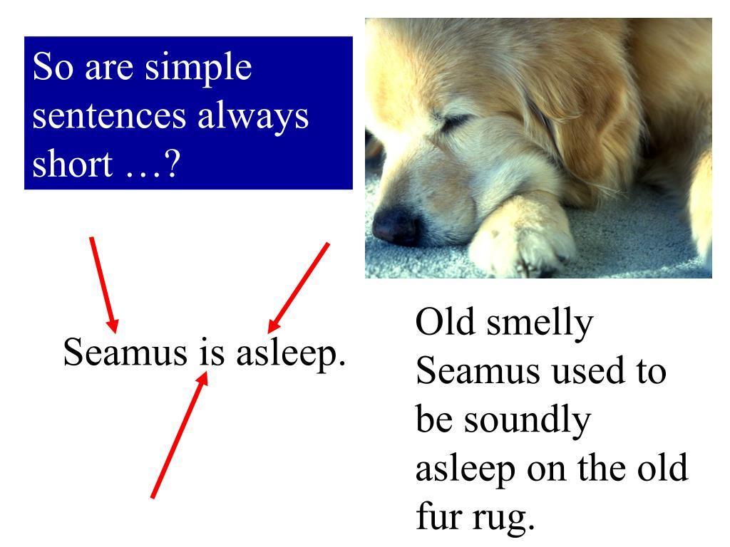 So are simple sentences always short …?