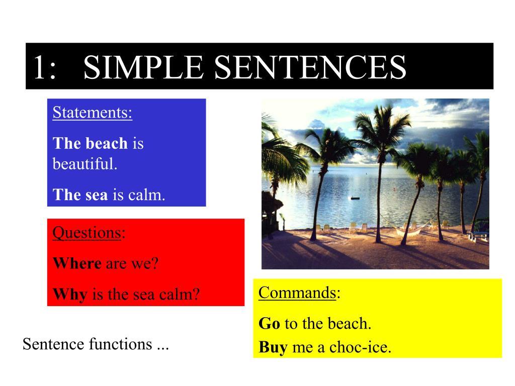 1: SIMPLE SENTENCES