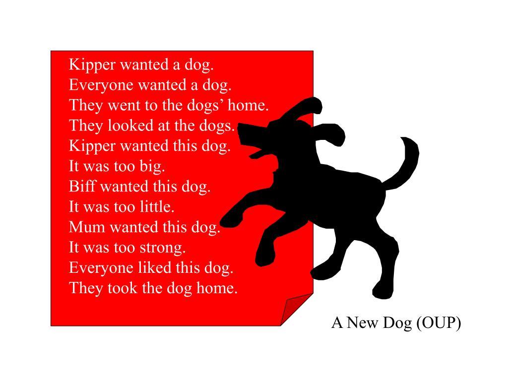 Kipper wanted a dog.
