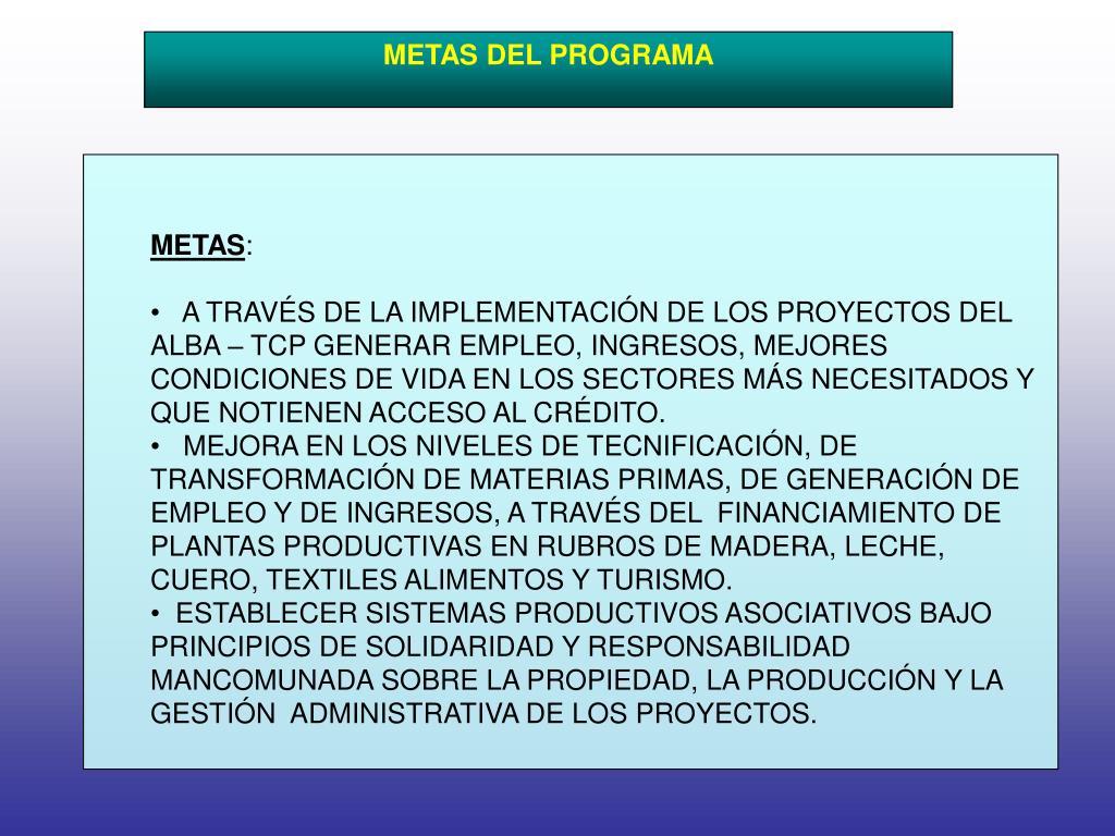 METAS DEL PROGRAMA
