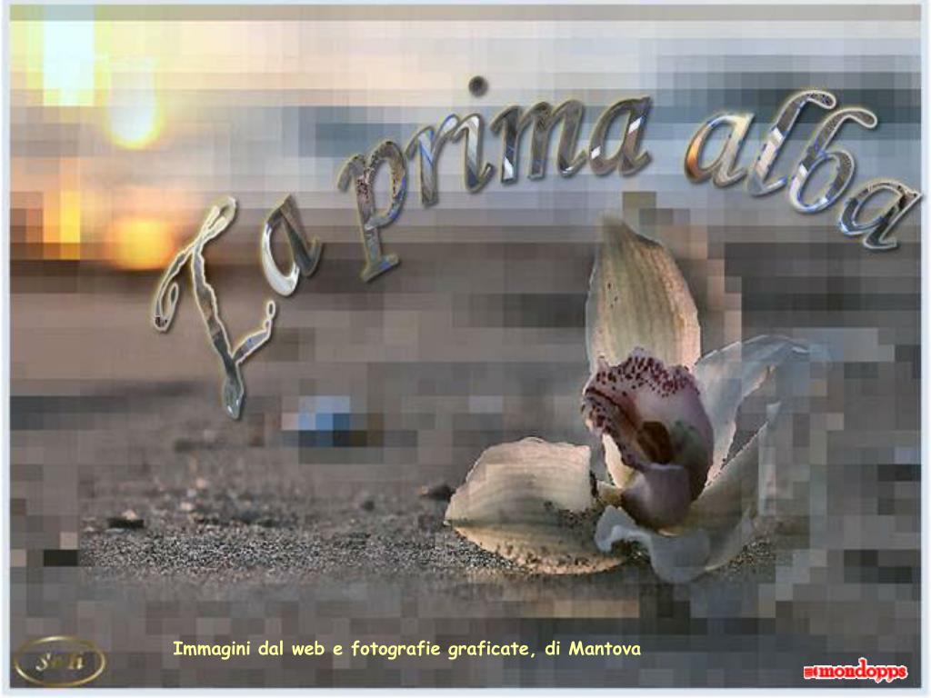 Immagini dal web e fotografie graficate, di Mantova